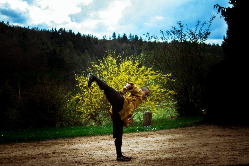 shifu artes marciales