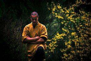 Shifu Shaolin temple